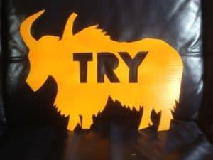 TRY Yack