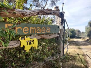 A farm gate with the property name and a yellow yak on it